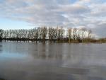 rheinhochwasser_12