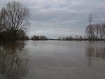 rheinhochwasser_6