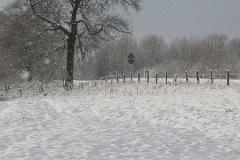 Galerie Schneelandschaften am Niederrhein