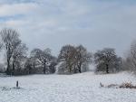 Schneelandschaften 2
