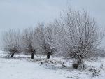 Schneelandschaften 4