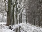 Schneelandschaften 5