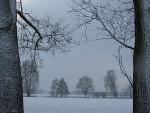 Schneelandschaften 6