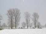 Schneelandschaften 8