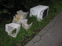 Müll an unserer Wiese