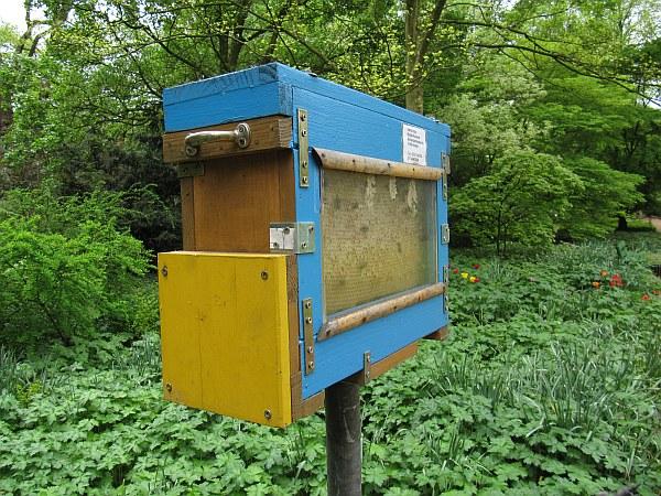 Bienenschaukasten Aufgebaut Imkerei Obstwiese Aktuelles