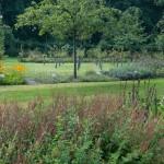 Gartenanlage_0765